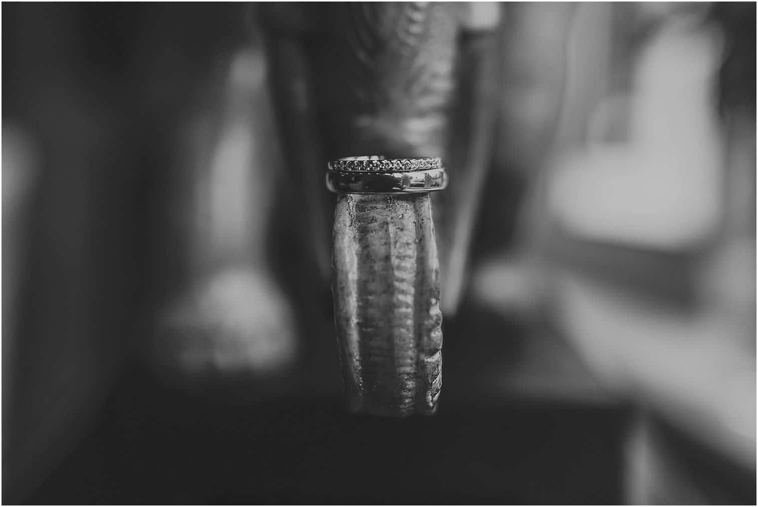 Wedding rings on an elephant sculpture