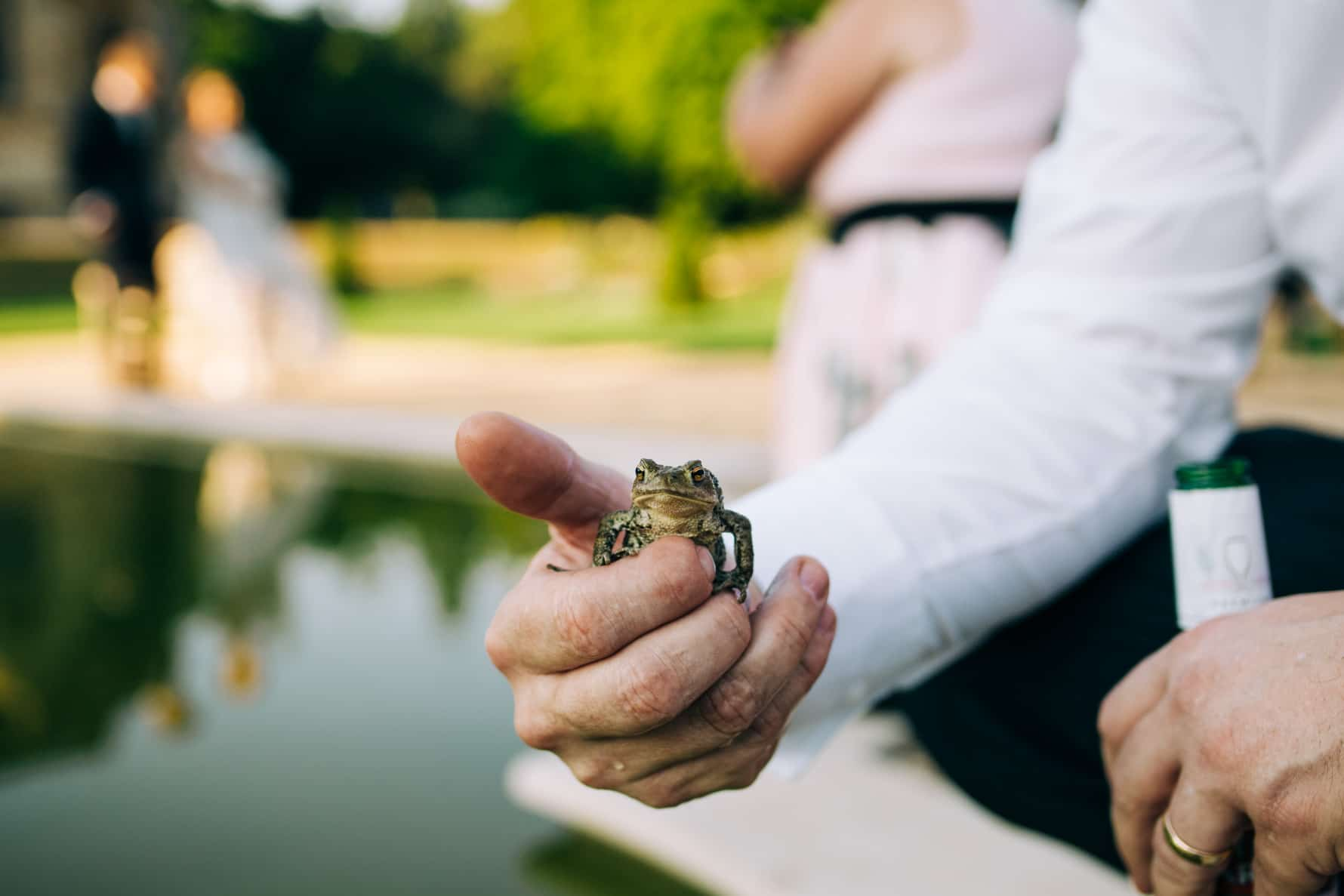 A frog being held in front of a bride and groom